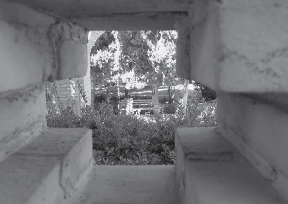 نگاهی از پنجره ای چهارگانه به باغ فین