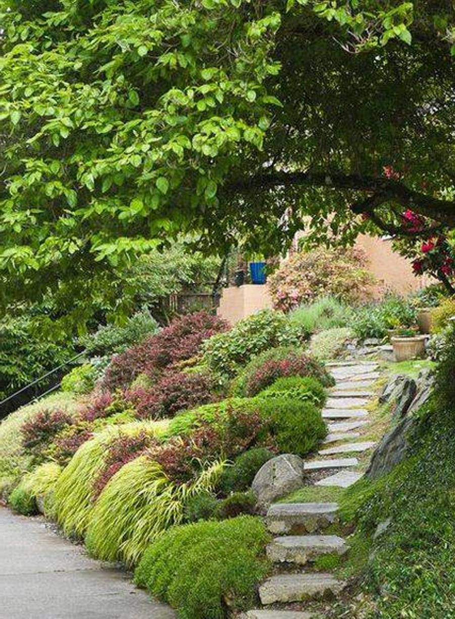 باغ تپه