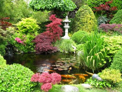 گیاهان باغ ژاپنی