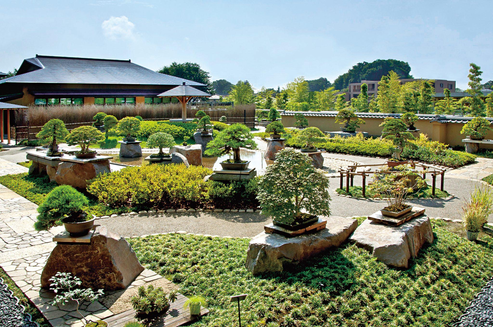 نمونه ای از باغ بونسای